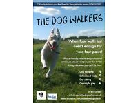 The Dog Walkers: Professional Dog Walking and Pet Sitting Service in Derby, Nottingham & Leicester
