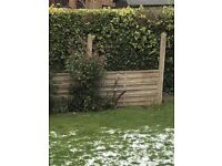 Concrete garden wall and posts - free