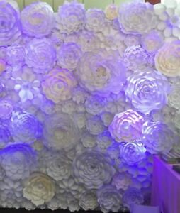 Large flower wall for rent