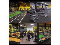 NEW Gym Xercise4Less