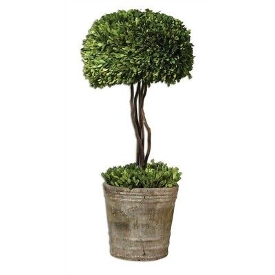 Beaumont Lane Tree Topiary Preserved in Natural -