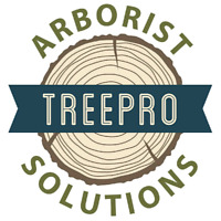 Tree removal trimming stump grinding arborist reports