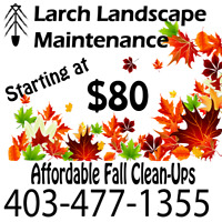 Affordable fall clean ups