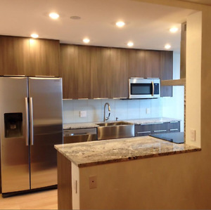 From $ 159 / LF Kitchen cabinet with soft closed doors