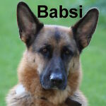 Babsis-Lädchen