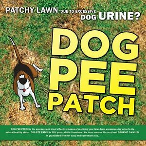 PATCHY LAWN FROM DOG URINE?