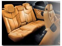 Mobile Leather Repair & Cleaning Business for sale