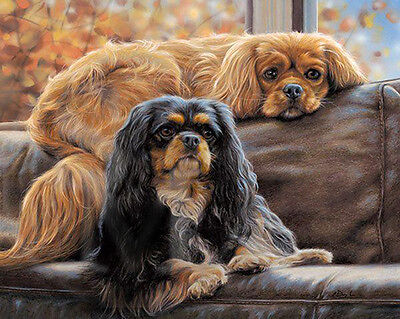 CAVALIER KING CHARLES ENGLISH TOY SPANIEL DOG ART LIMITED EDITION PRINT