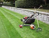 Grass cutting, carpentry, painting and much more!!
