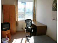 LOVELY SINGLE ROOM for 1 week from 29 Aug - 5 Sept in Mile End - All bills included - Girl or Guy