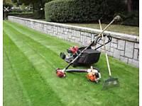 Grass cutting cheap prices