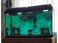 Quick Sale Aquarium marina 60l set