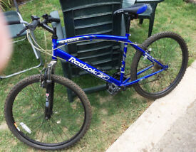 Reebok Evolve Mountain bike