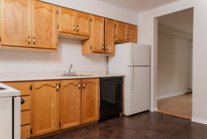 Beautiful Spacious South End Bachelor  All Inclusive! May 1st!
