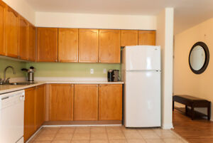 Beautiful 1 bedroom available November for $1195