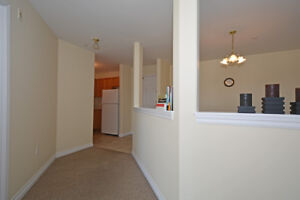 Beautiful 1 bedroom available July1st for $975!