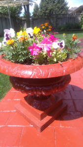 Cast iron flowers pots and flowers