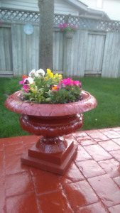 Two Cast Iron flowers pots and flowers
