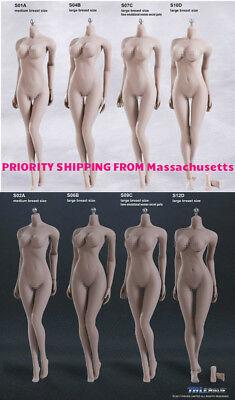 【USA PRIORITY SHIPPING】 PHICEN TBLeague 1/6 Steel Skeleton FEMALE Seamless Body - Female Skeleton