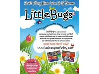 Little Bugs Soft Play Hire