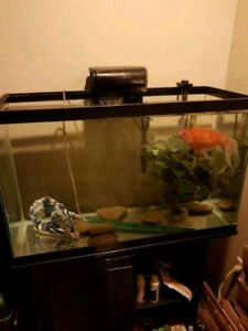 29 Gallon Aquarium Kit with Stand