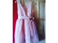 11-12 years Blush pink bridesmaid/occasion dress brand new £20