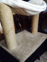 Kitty Bed And Scratcher