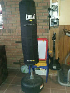 ► Everlast Everflex Cardio Strike Bag (Water Filled)