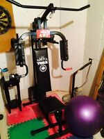 York 401 Home Gym.