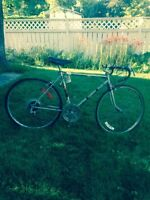 1980 Raleigh 10 speed