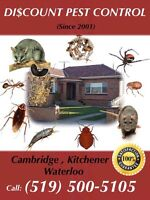 Discount pest control services call 519-500-5105