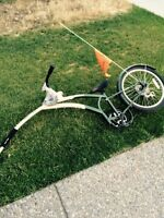 **reduced**Trail A Bike for sale