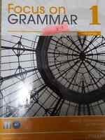 Focus on grammar 1 third edition Pearson