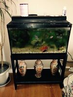 20-25 Gallon fish tank with stand