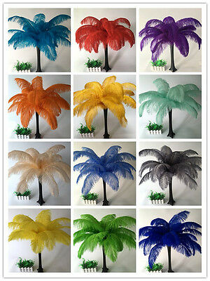Wholesale, 10-100pcs special color ostrich feathers 6-30inches/15-75cm 16 colors