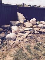 Rock garden-- free to anyone who can take them