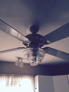 4 ceiling fans-$10-$30 or $75 for all