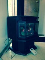EnviroGas free standing fireplace