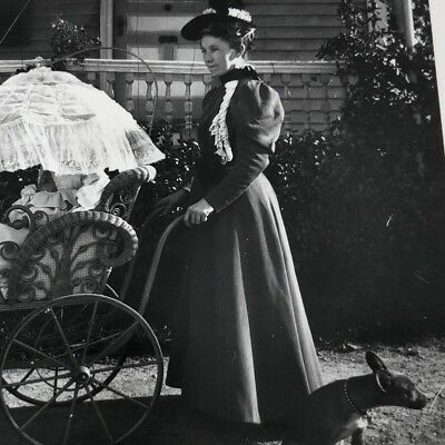 Great1890s photo woman fancy pram carriage baby dog victorian exterior
