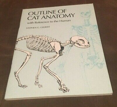 Outline of Cat Anatomy, with Reference to the Human by Stephen G. Gilbert (Outline Of Cat)