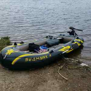perfect fishing boat seahawk 4 with motor $800