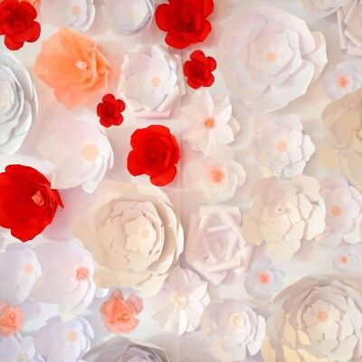 Paper Flower Red White Pink Backdrop Studio Props 8x8ft Background Photography (White Backdrop Paper)