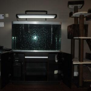Aquarium 260L / 69US gallons avec meuble et accessoires