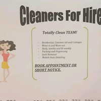 CLEANERS FOR HIRE 902 989 0550