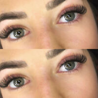 Elite Lashes, Eyelash Extensions