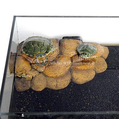 Reptile Floating Platform Turtle Terrapin Tortoise Terrarium Aquarium Tank Decor