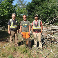 HUNT VENTURES TREE SERVICES: Tree Removal / Chain Saw Services