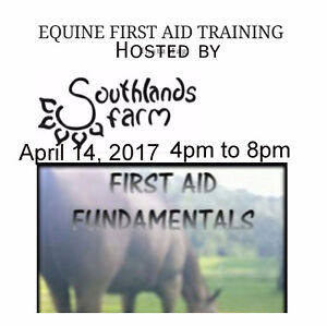 Equine Fundamentals Emergency Equine First Aid Clinic