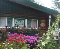 Cottage to Rent for Summer Vacations