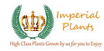 Imperial Plants